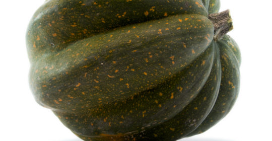 The Benefits of Squash – Acorn Squash